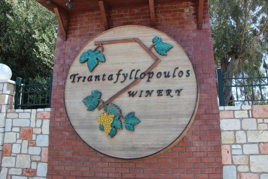 Производство вина на острове Кос в Греции